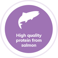 Cat Salmon