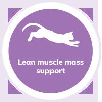 cat lean muscle