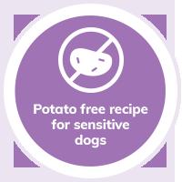 Dog Potato Free