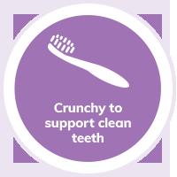 Cat clean teeth